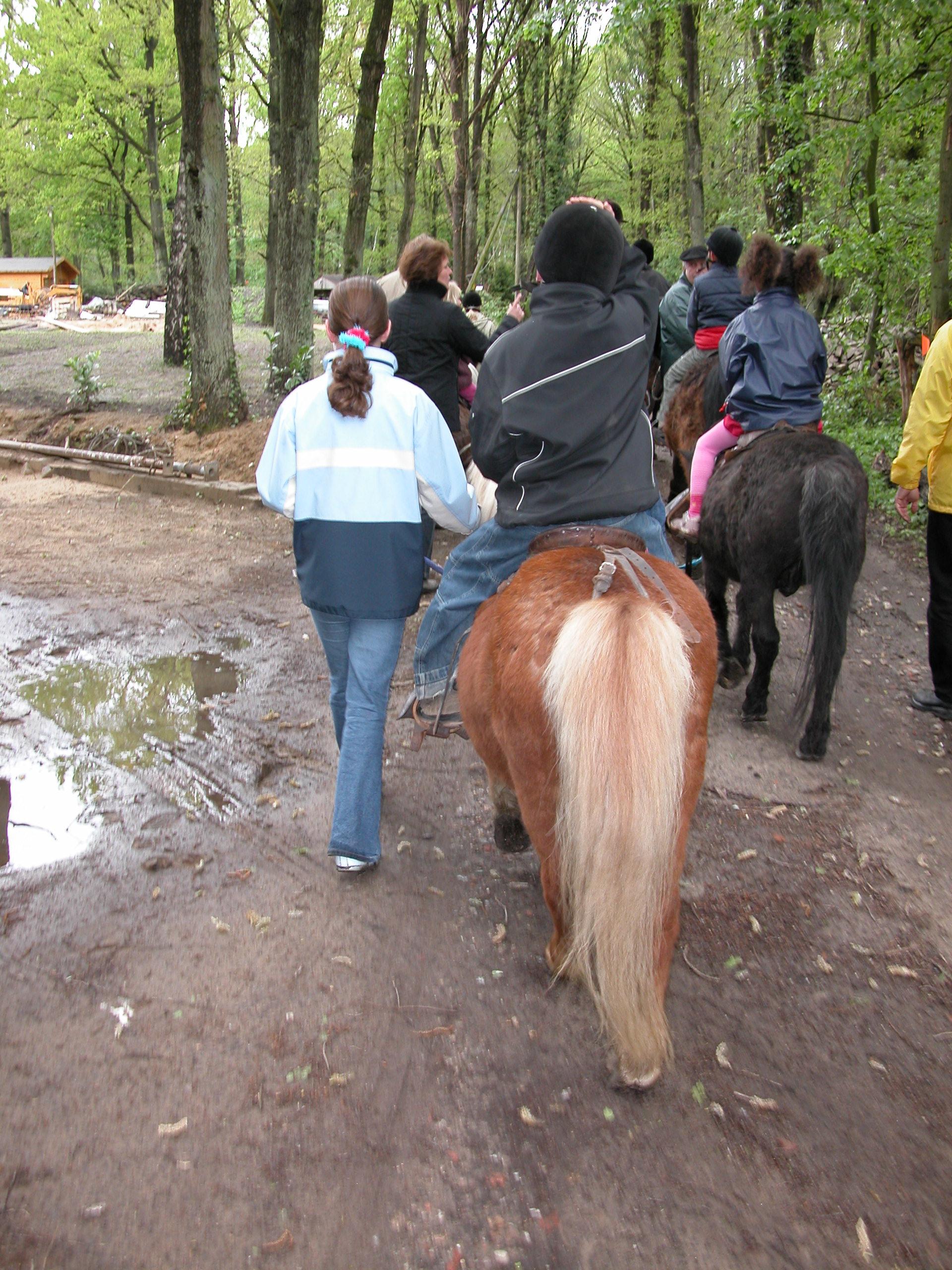 Paardrijden in Emsdetten